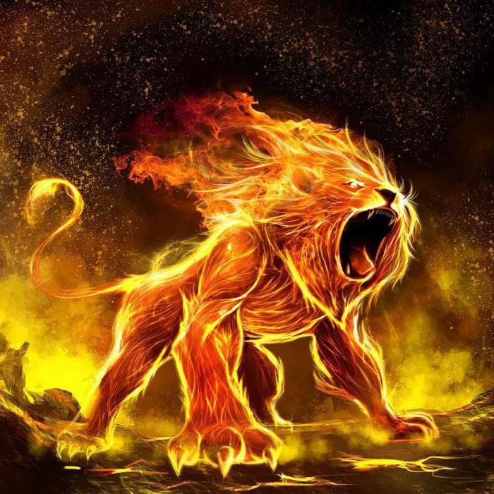 Як ображаються леви жінки. Як і на що ображаються знаки зодіаку