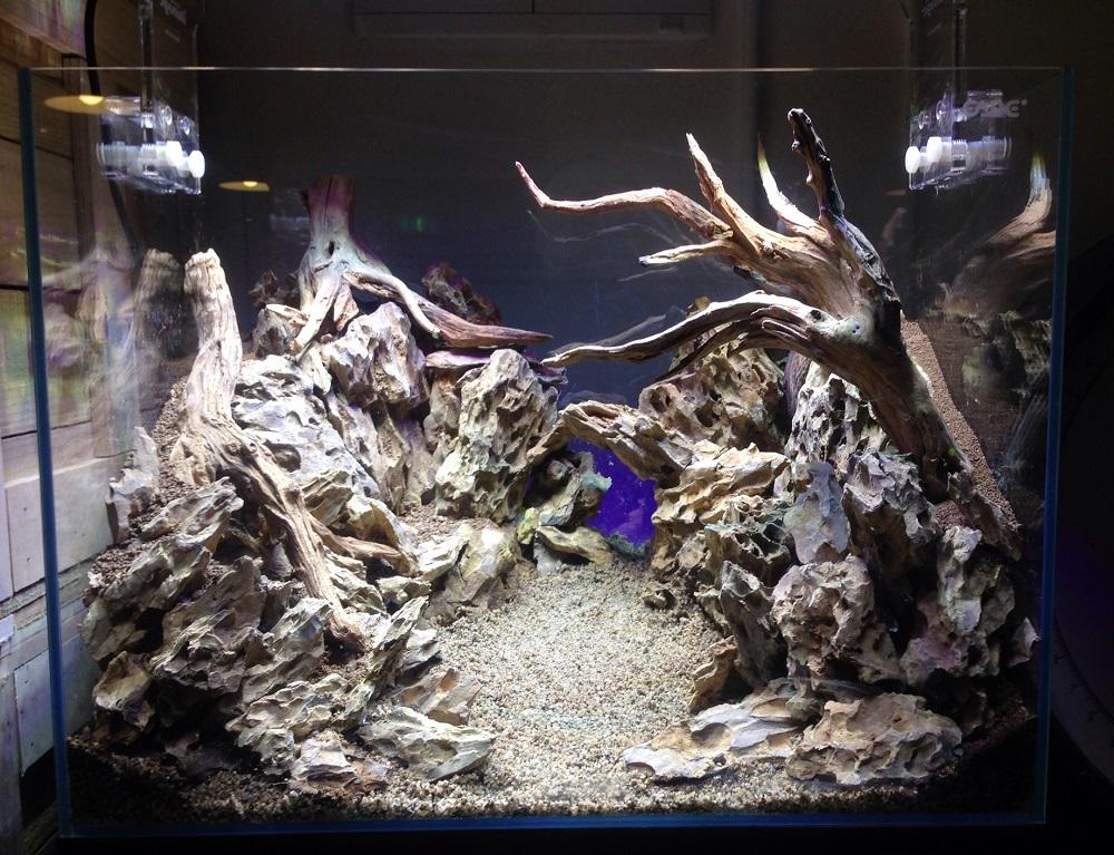 Оформлення акваріума своїми руками: грунт, корчі, акценти. Як оформити акваріум своїми руками: створюємо підводне диво оформлення акваріума 100 літрів своїми руками