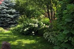 Ландшафтний дизайнер олена сєдова. Цікаві ідеї для саду від олени сєдової