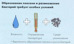 Чи потрібно грунтувати гідроізоляцію. Переваги грунтування перед укладанням плитки і різновиди складів