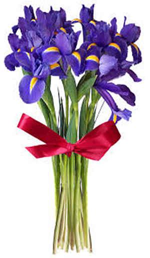 Поєднання кольорів в букеті. Гармонія кольорів: як підібрати правильну колірну гамму в букеті які поєднуються квіти в букеті
