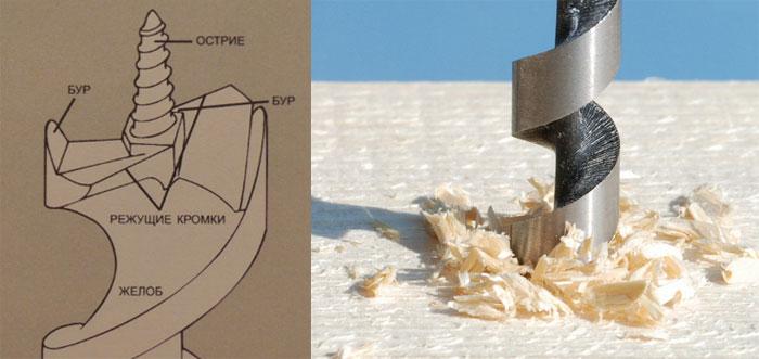 Як правильно заточити свердло в домашніх умовах. Свердло по дереву-визначаємо, вибираємо і заточуємо! як правильно заточити перове свердло по дереву